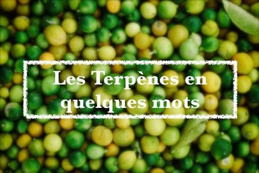 Les terpènes – Blog Fresh Label